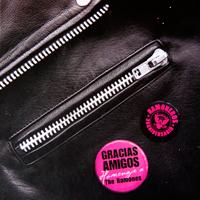 """GRACIAS AMIGOS, """"Homenaje a los Ramones"""" con Caco Santolaya (2006)"""